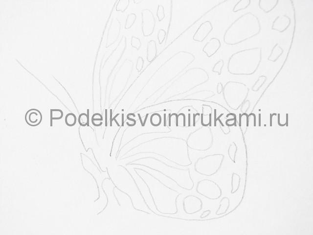 Рисуем бабочку цветными карандашами - фото 7.