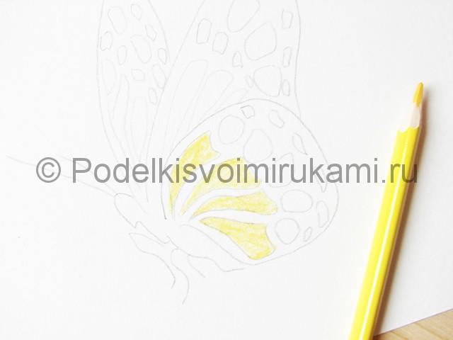 Рисуем бабочку цветными карандашами - фото 8.