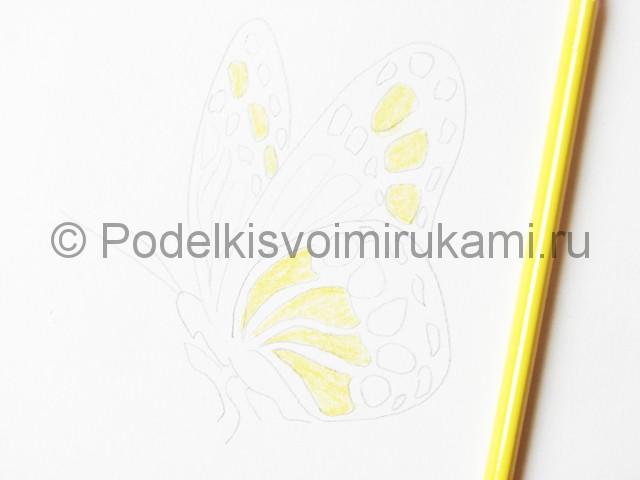 Рисуем бабочку цветными карандашами - фото 9.