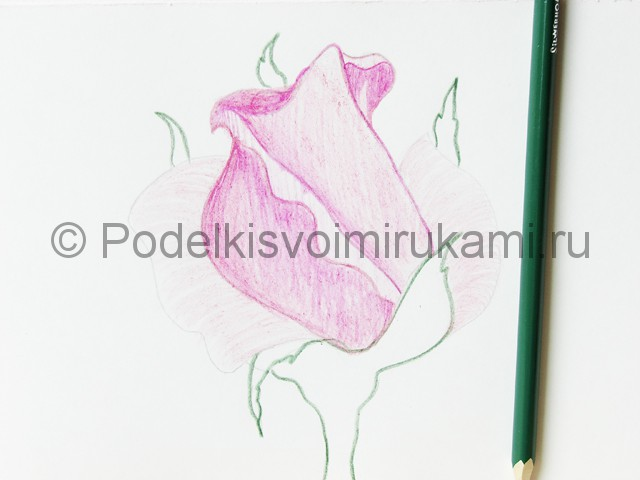 Рисуем красивую розу цветными карандашами - фото 13.