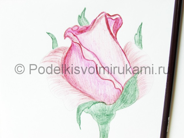 Рисуем красивую розу цветными карандашами - фото 17.
