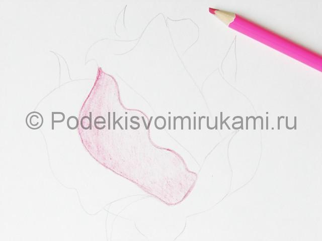 Рисуем красивую розу цветными карандашами - фото 7.
