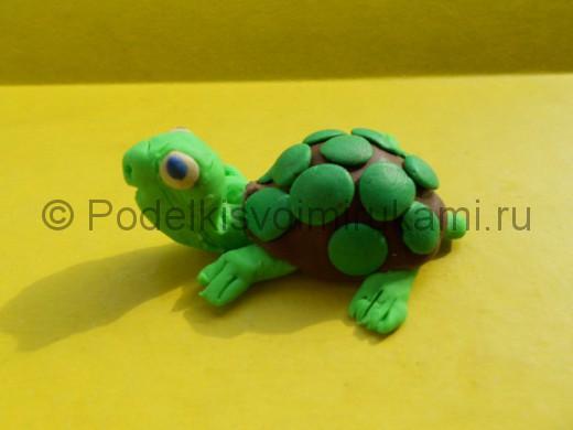 Как слепить черепаху из пластилина. Итоговый вид поделки.